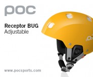 Receptor Bug Adjustable (300×250)